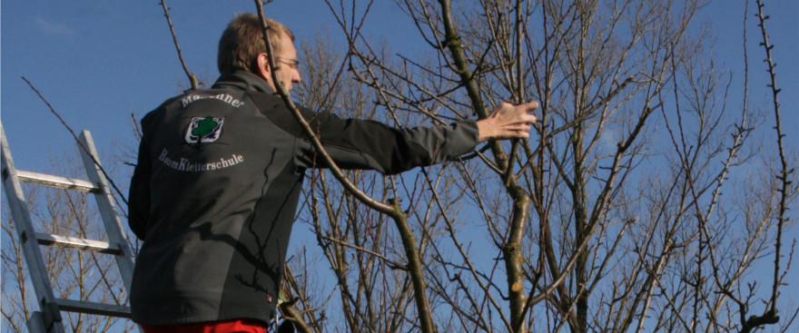 Obstbaumschnitt mit Johannes Bilharz