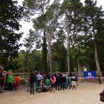 An diesem Wochenende startete auch in Europa die Meisterschafts-Saison – und zwar in Spanien mit der dortigen nationalen Meisterschaft im Baumklettern. Die Spanische Baumklettermeisterschaft 2014
