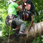 Deutsche Baumklettermeisterschaft 2014: Rettung