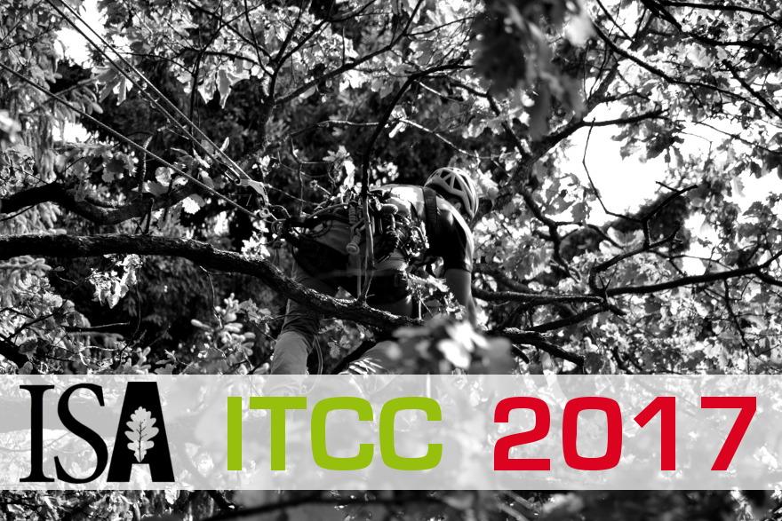 ITCC 2017: Ergebnisse