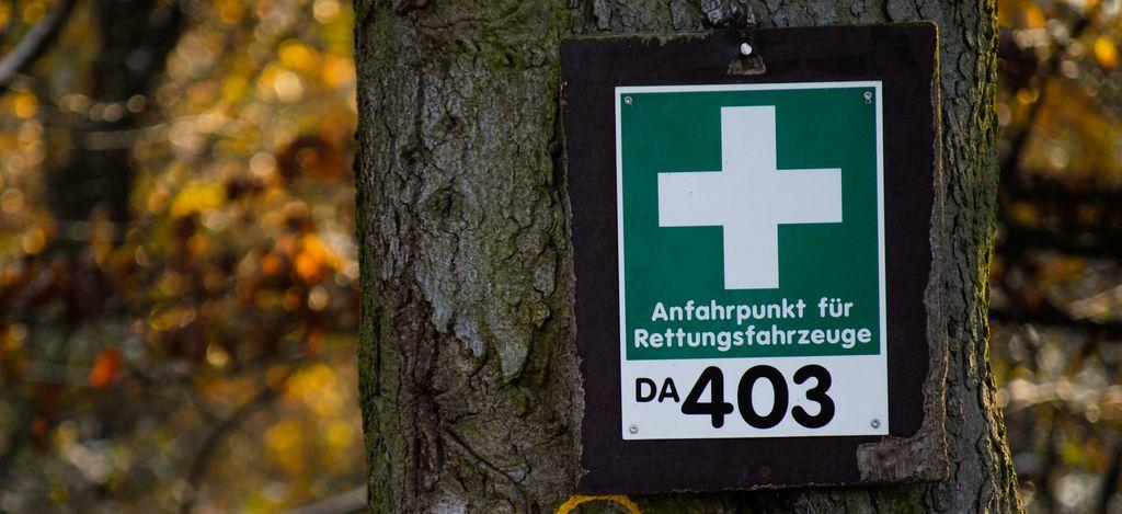 Schild mit weißen Kreuz auf grünem Grund an einem Baum