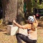 Frau mit Helm zieht an dünnen Seilen die einen Baum gehen