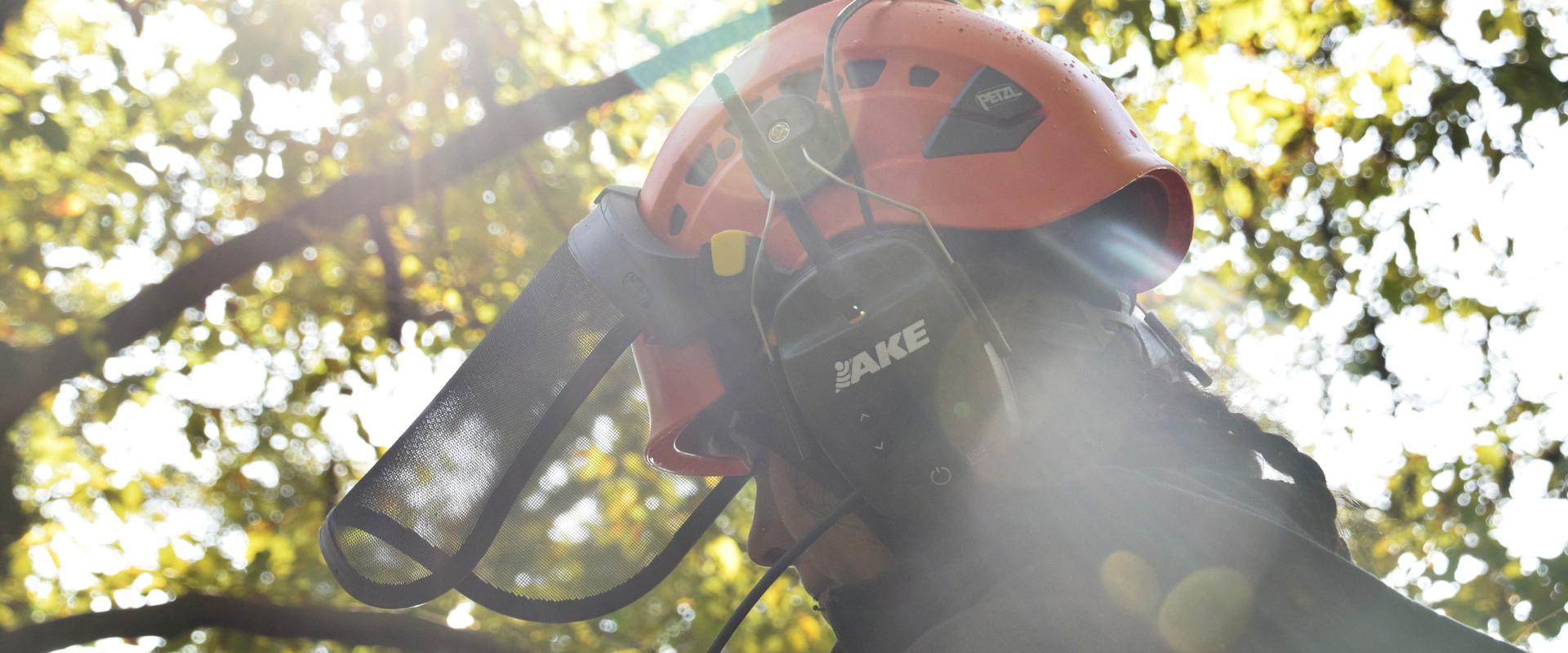 Permalink zu:ECC – Die moderne Art der Kommunikation im Baum