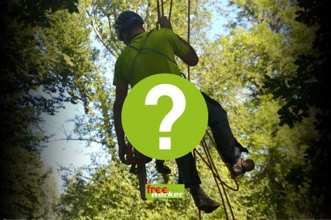 Permalink to: Tree climbing harness: Which harness fits me?