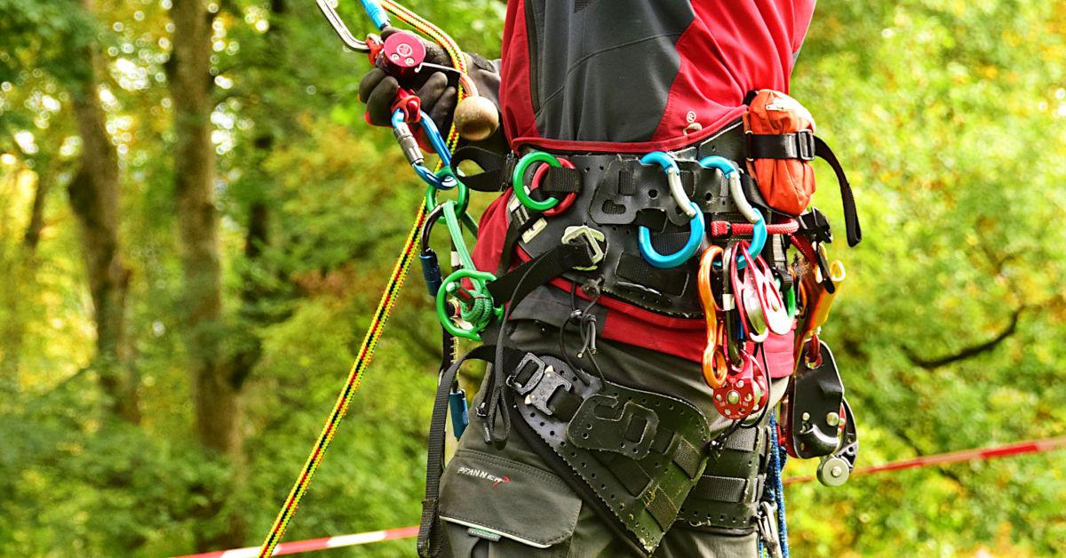 Arborist Climbing Fall Arrest Harness Tree Care Falling Protection Equipment